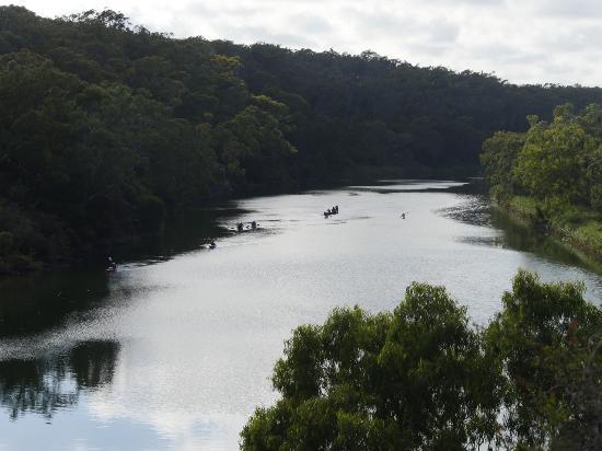 Nelson, Australie: Glenelg River Looking Upstream