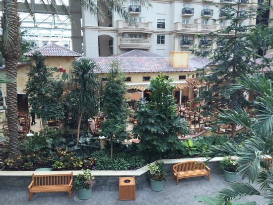 Villa de Flora: Another view of the restaurant