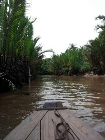 Nature-Mekong: Mekong Delta