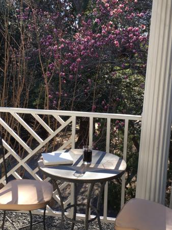 The Morehead Inn: 2nd floor patio open to my room overlooking the tulip tree – glass of wine and a book.