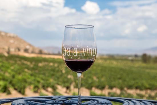 Baja Vino