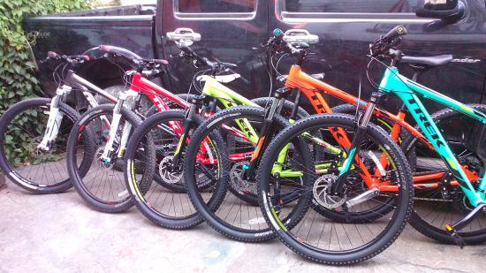 NK Bike Rentals