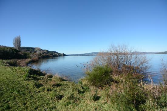 Springwaters Lodge: Lake Rotorua