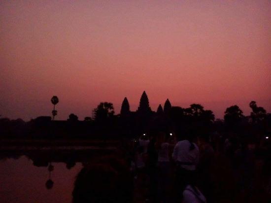 Angkor City Service Remorque Tour