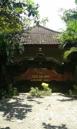 Bali Driver Solution
