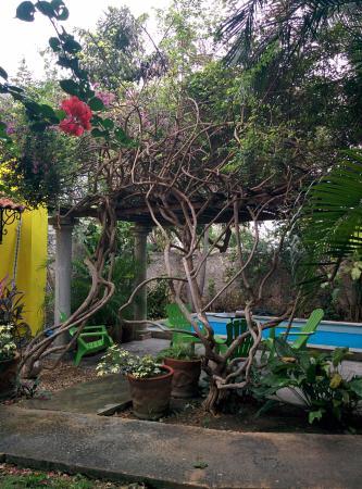Casa Santiago: IMG_20160303_123819_large.jpg