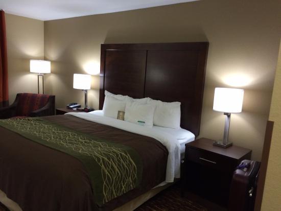 Comfort Inn & Suites Artesia Picture