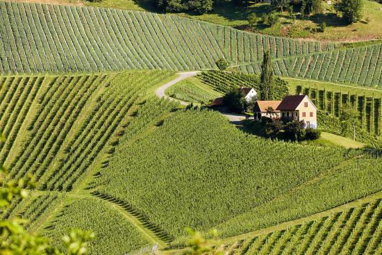 Photo of Gut Poessnitzberg Styria
