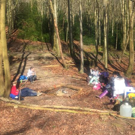 Funways: BOBCATS daily outing to woods