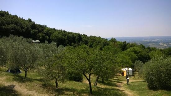 Civitella del Lago, Italia: Mototrip lago di Corbara