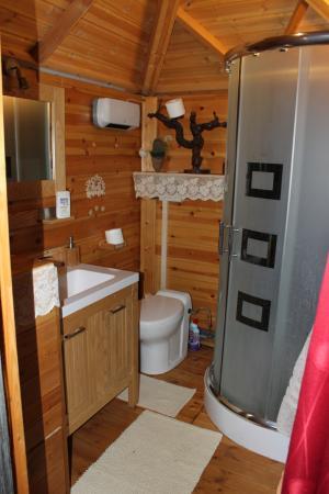 Monthou-sur-Cher, Γαλλία: La salle de bain / toilettes