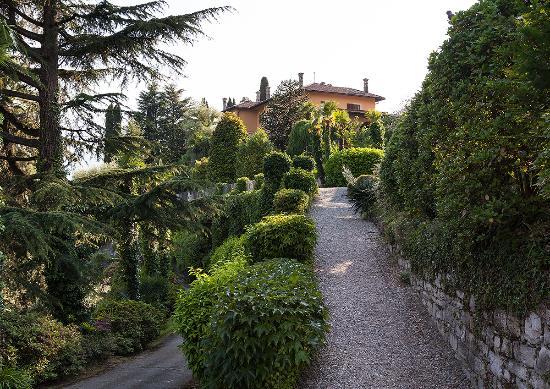 Villa La Collina: Park