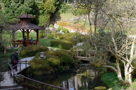 Jard N Japones En Powerscourt Picture Of Powerscourt Gardens And House Enniskerry Tripadvisor