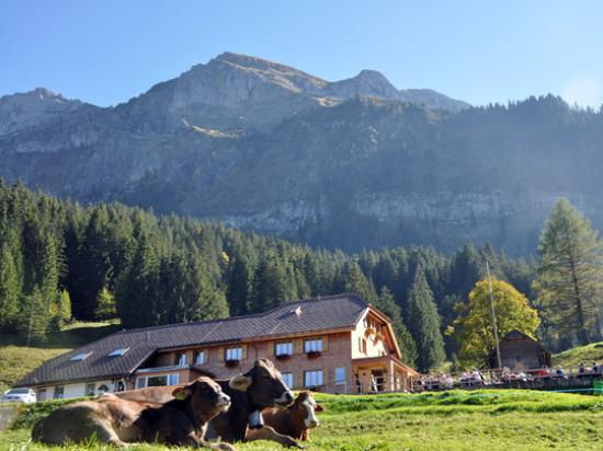 Zdjęcie Canton of Nidwalden