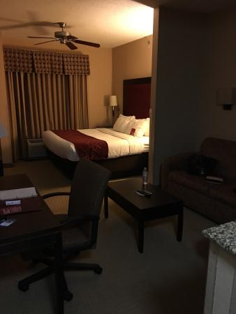 Comfort Suites DFW N/Grapevine: photo1.jpg