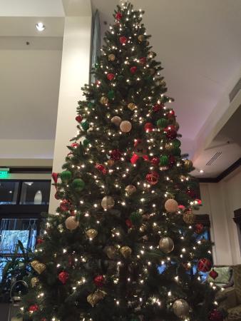 Hilton Garden Inn Houston NW/Willowbrook Photo