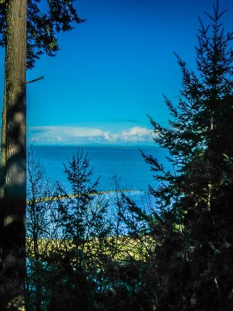 Sequim, WA: from an overlook on the paved path down to the Strait of Juan de Fuca