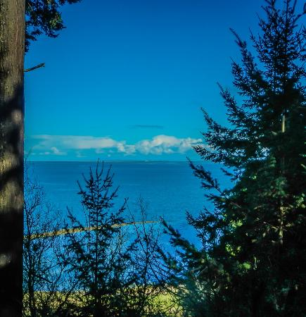Sequim, WA: another view from overlook