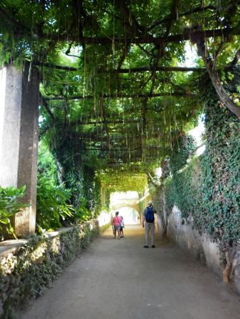 Vistas Hacia La Costa Amalfitana Desde Villa Cimbrone