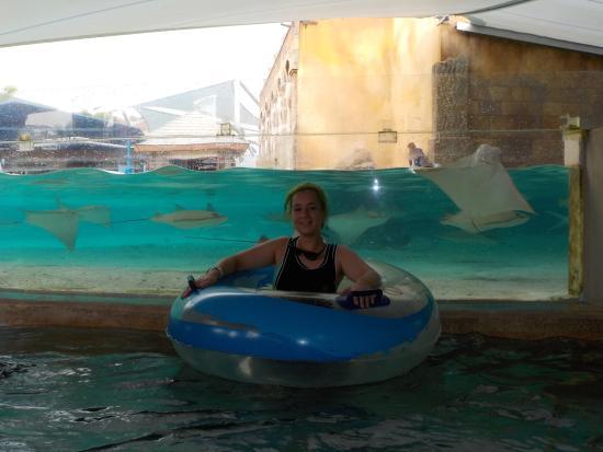 Ray Bay океанариум и парк развлечений