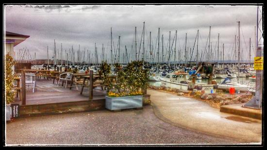 The Boat House Cafe Gosport Marina: The deck outside The Boat House Cafe