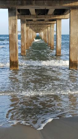 Padre Island National Seashore: 20160305_174535_large.jpg