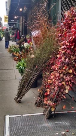 Hilton Garden Inn New York/Manhattan-Chelsea: The hotel sits on the flower. Flower district photos
