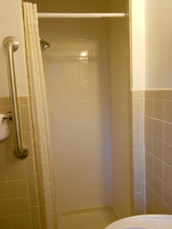 Saddle & Surrey Motel: small shower
