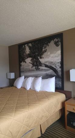 Bowman, ND: King room