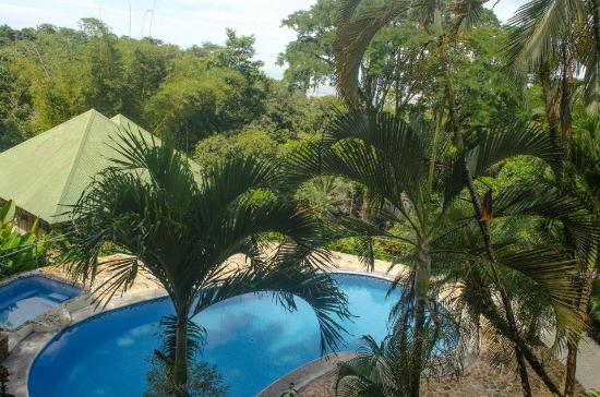 Tabulia Tree Hotel & Villas: Swimming pool view