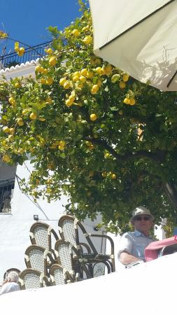 Bodega de Pepe : Beautiful spot - good food well worth a visit