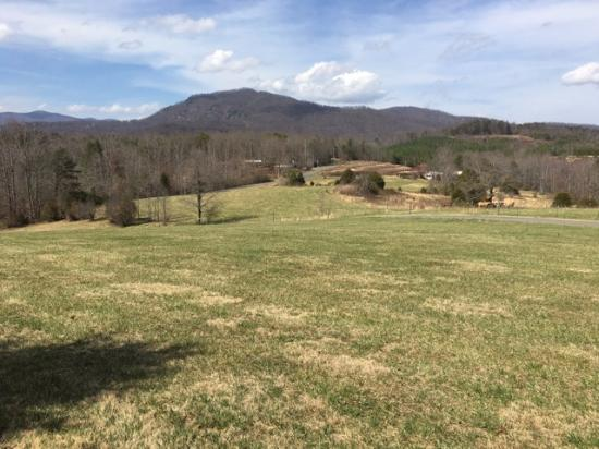 Fox Run Resort: View from the check-in center