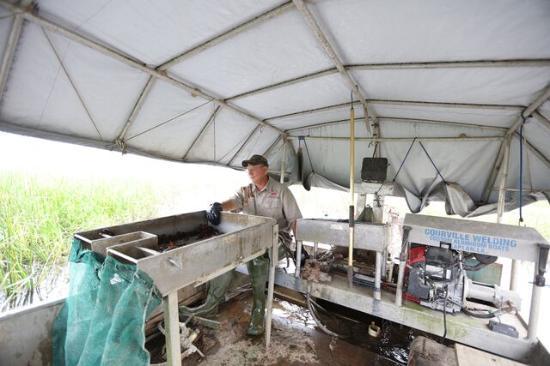 Kaplan, Λουιζιάνα: Crawfish Boat Interior
