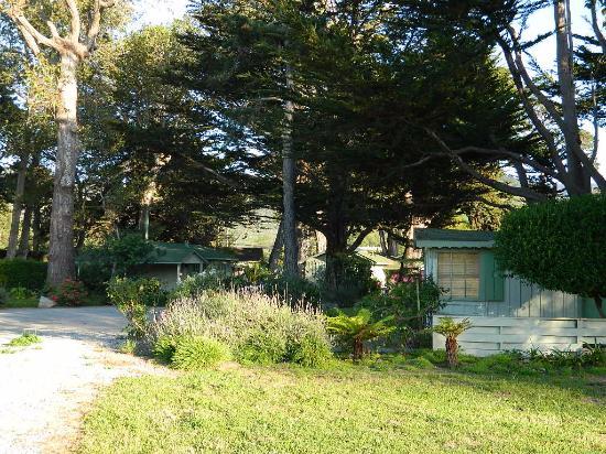 cottages and grounds picture of carmel river inn carmel tripadvisor rh tripadvisor co nz