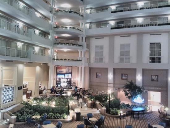 picture of embassy suites by hilton alexandria old rh tripadvisor com