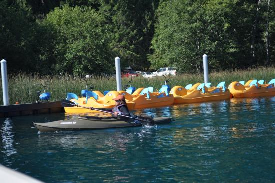 Water Activity Rentals They Have Water Bike Kayak And More
