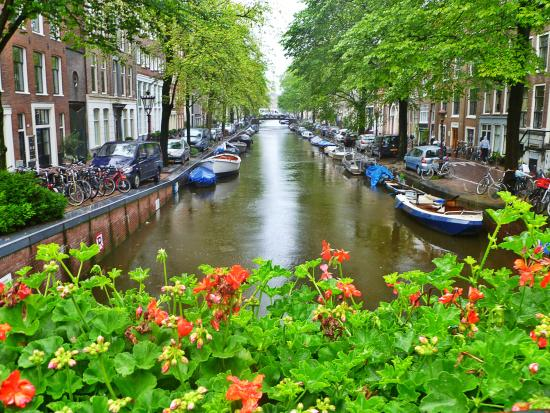One of the many canals populated with flowers, boats, bicycles and mini cars (177106546)