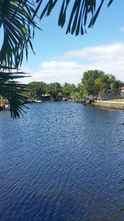 Wilton Manors, FL: 20160308_134839_large.jpg