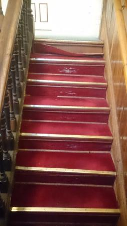 Arthouse Hostel : Stairwell to the first floor. Carpet torn and well worn