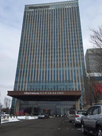 my favourite pig picture of sheraton harbin xiangfang hotel rh en tripadvisor com hk