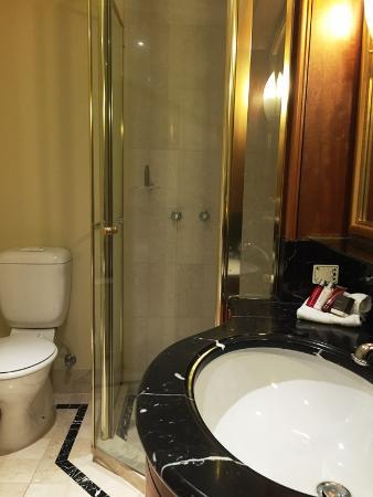 Brisbane Marriott Hotel Separate Shower Stall Bathtub In Good Size Bathroom