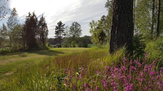 Nivelax, Finlandiya: Golfbana, hål 7