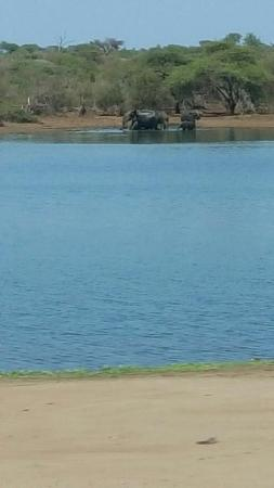 Marloth Park Aamazing River View Photo