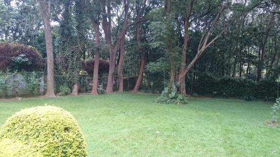 The Equator Hotel: The garden