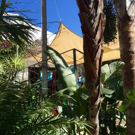 imagen Wet Cafe en Tarifa