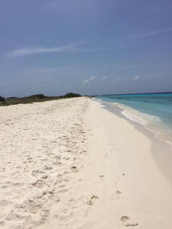 Poppy Hostel Curacao: photo2.jpg