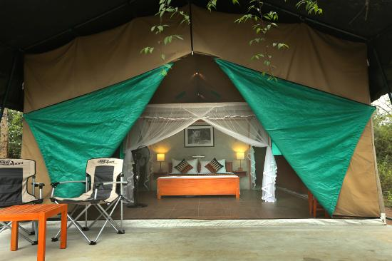 Wilpattu Safari Camp Our Double Bed Tents