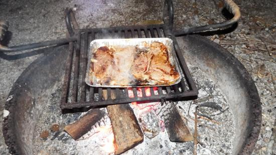 Townsend, TN: Firepit with grate, must use USDA approved firewood or collect wood from grounds