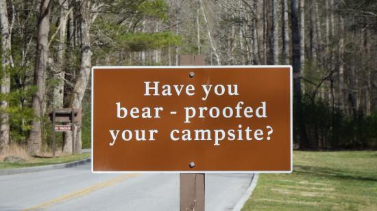 Townsend, TN: DON'T feed the bears!