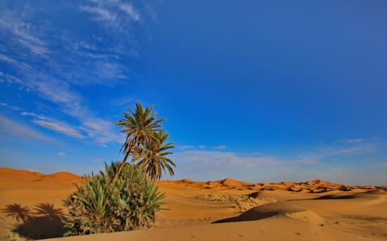 Pure Morocco Tours - Day Tours